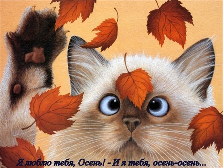 картинки я люблю тебя осень